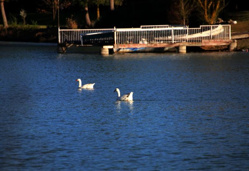 Lago de Maito